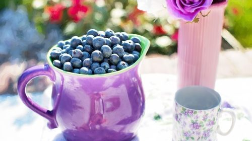 blueberries-864628_640